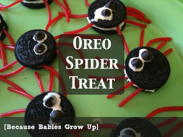 Oreo Spider Treat
