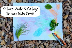 Nature-Walk-and-Collage-Science-Kids-Craft-3