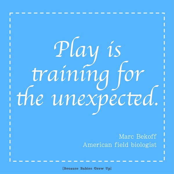 Play is training for the unexpected